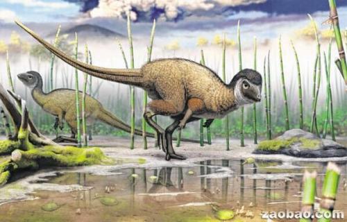 画家笔下的食草类鸟臀目恐龙。