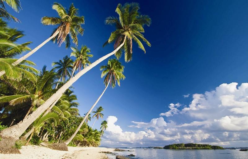 泰国,济州岛,巴厘岛最受欢迎(图)