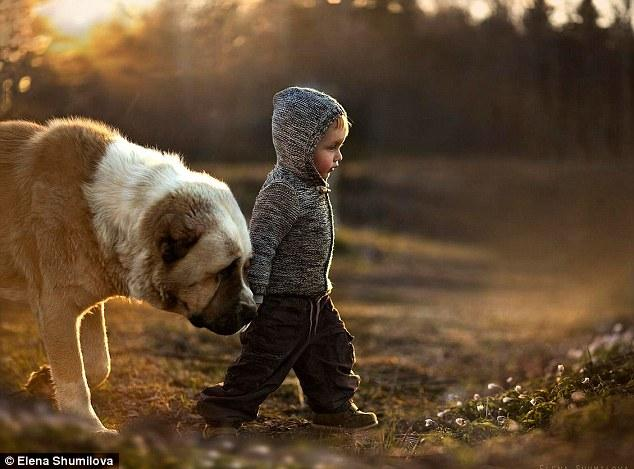 人与动物之性_宝宝与大狗的故事 刻画人与动物的真挚感情(组图)