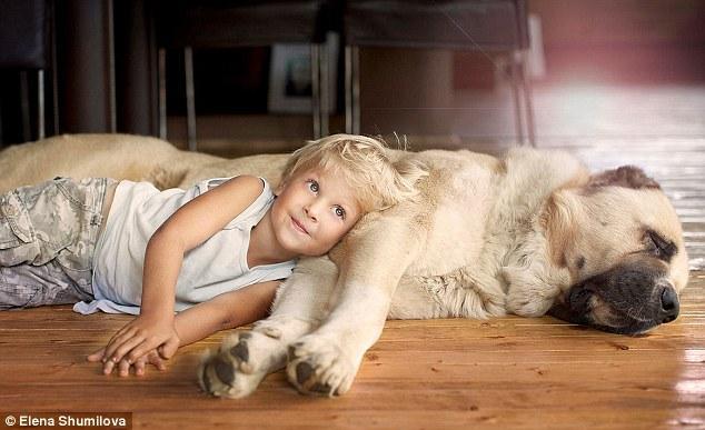 人与动物的愹�.�+���_宝宝与大狗的故事 刻画人与动物的真挚感情(组图)