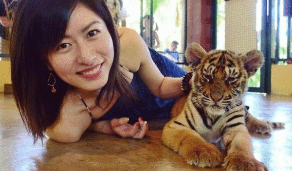 泰国老虎 是什么