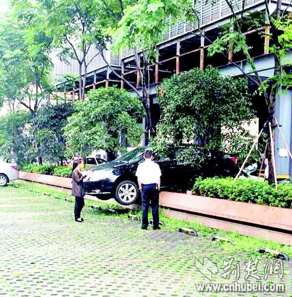 武汉:女司机不慎猛踩油门 轿车倒上半米高花坛_荆楚网