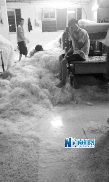 车间里工人赤脚踩在米粉上。 网络图片