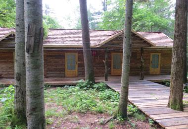 森林木屋 林中别墅二人间