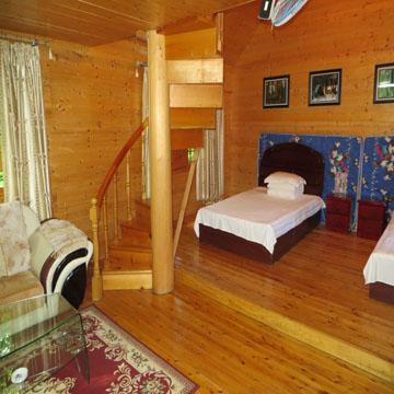 森林木屋阁楼