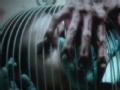 《美国怪谭》第4季概念预告:Caged