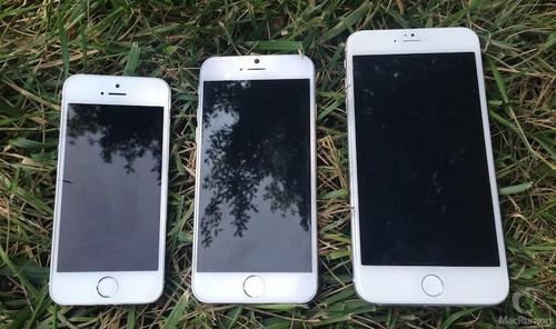 两款iPhone