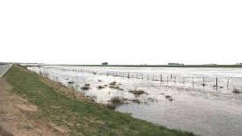 阿根廷布宜诺斯艾利斯省遭水灾进入紧急状态