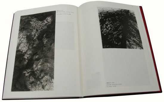 旅加艺术家宣永生意象性抽象水墨作品集——《飚墨与狂逸》出版