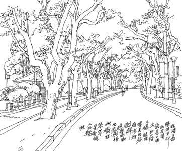 素描风景画画桥