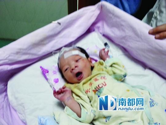 经初步救治,坚强的小宝宝已脱离危险。南都记者 梁清 摄