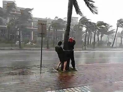记者绑树上报道台风