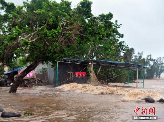 """台风""""海鸥""""致广东湛江经济损失近80亿元"""