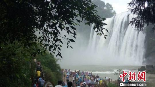贵州黄果树瀑布达到景区开放以来国庆黄金周的最大水量,黄果高清图片