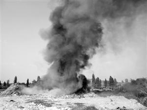 露天焚烧垃圾 污染环境(图)