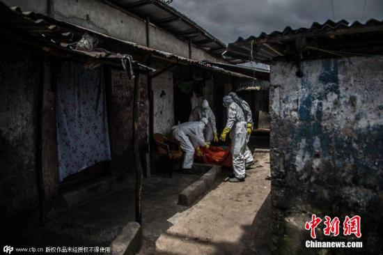 西非因埃博拉疫情面临粮食危机 已有77万人挨饿