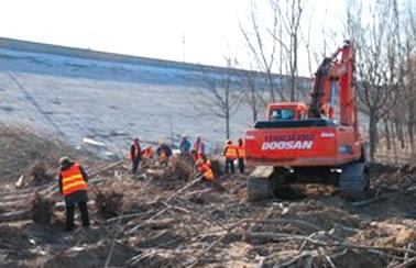 大宁调蓄水库工程现场,工人正在伐移树木。