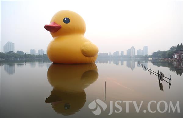 """大黄鸭事件是什么_大黄鸭""""巡游""""南京莫愁湖(组图)-搜狐滚动"""