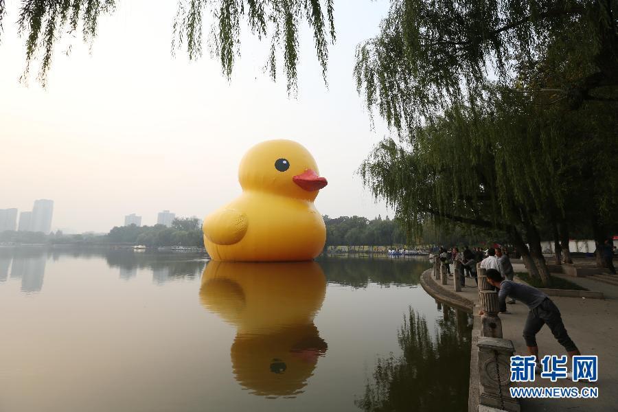"""大黄鸭事件是什么_大黄鸭""""游""""进南京莫愁湖(组图)-搜狐滚动"""