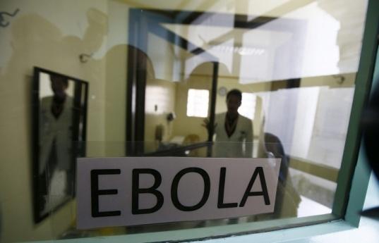 欧盟委员会主席巴罗佐在欧盟峰会期间表示,欧盟计划投入2440万欧元,用于研发埃博拉疫苗。(俄塔社)