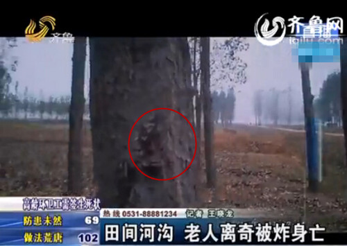虽然现场河沟已经被填平,但树上仍留着血迹(视频截图)