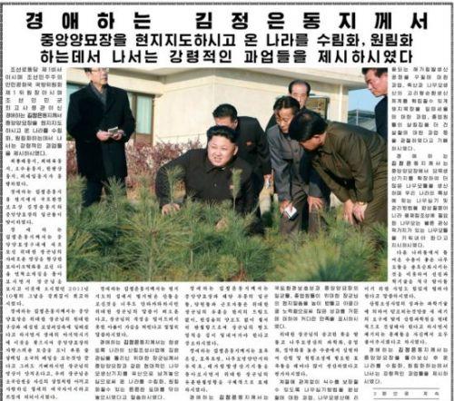 图为朝鲜《劳动新闻》截图