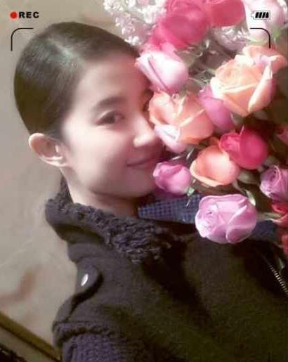 玫瑰花素颜图片