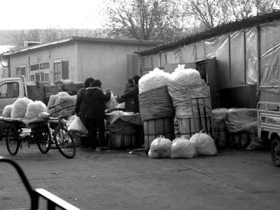 """""""黑作坊""""制好的豆芽流向北京日上综合商品批发市场。"""