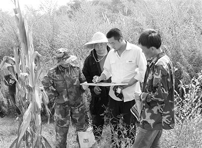 中国人保集团辽宁省分公司工作人员在现场查勘定损。 本报记者 张允强摄