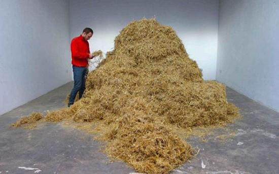 意艺术家表演行为艺术 干草堆里找针引人关注