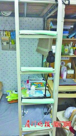 宿舍楼梯垫(厦门理工学院小梁供图)