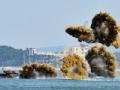 朝鲜核威胁