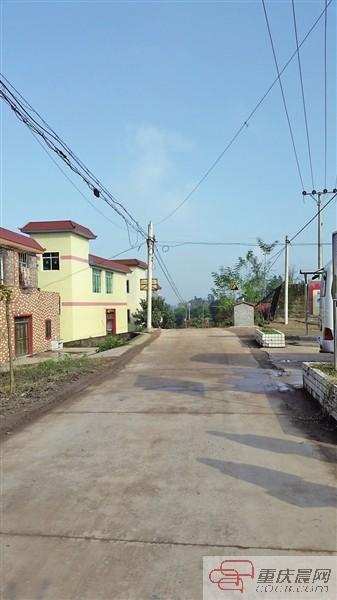 平坦整洁的村公路。