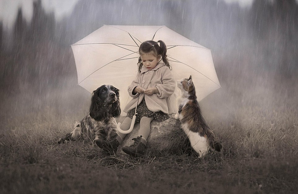 雨伞下的动物图片