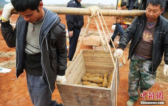 12月8日,湖南衡�市公安局治安支�在衡�市某空��Z炸���靶�觯��e�k了�U�f炸����合���Р铰摹�