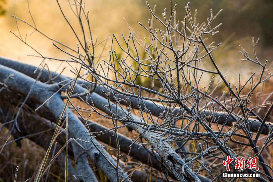 12月14日清晨,明升省国家名胜风景区武夷山景区出现霜冻,背阳的地方白茫茫一片,竹排在水中升腾的水汽若隐若现,宛如仙境,美景令人流连。杨婀娜
