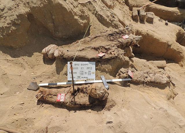 出土的很多具木乃伊埋藏时被绑在一起。(网页截图)