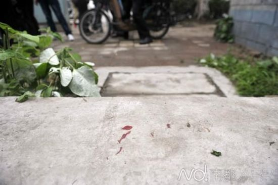 己残女性与缓急察对峙的中剩少血印。 南邑记者 梁炜培 摄
