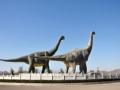 北京自然博物馆 恐龙之最