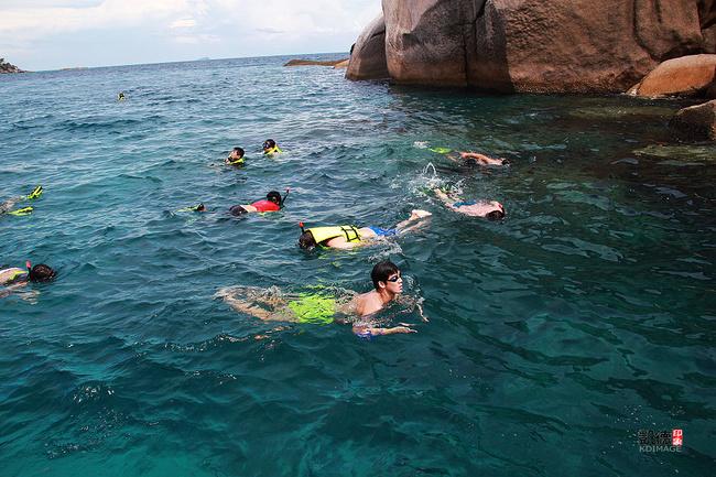 【斯米兰群岛】与海龟一起游泳