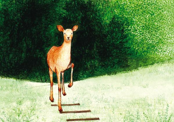 温暖清新的森林系绘本