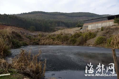 养猪场规模很大,产生的猪粪便可制造大量沼气,供附近村民免费使用