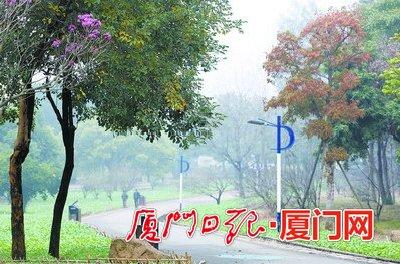 大雾天,公园游客也少了。
