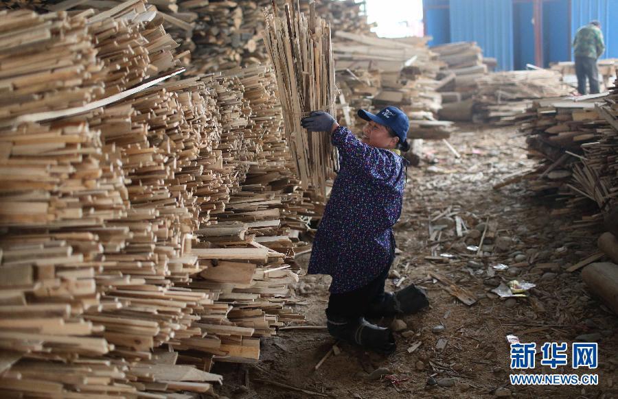 1月25日,胡凤莲把木材捆好后堆放在一起。
