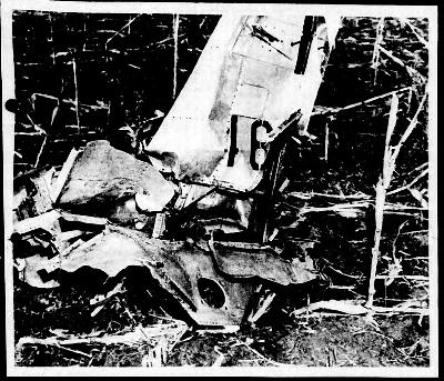 """曼特尔事情中坠毁的战机残骸图像来历:""""蓝皮书方案""""陈述"""