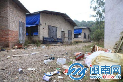 陈溪泉和陈海水合办的养猪场已转租他人