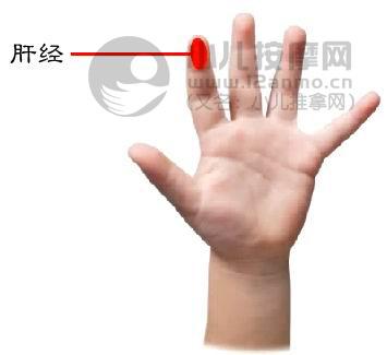 所以中国康复人才的培养多数并未细分