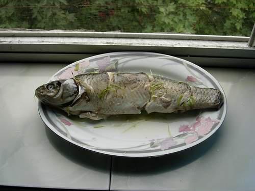清蒸鱼的家常做法(步骤图解)