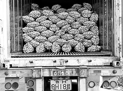大蒜出口前在国内装货