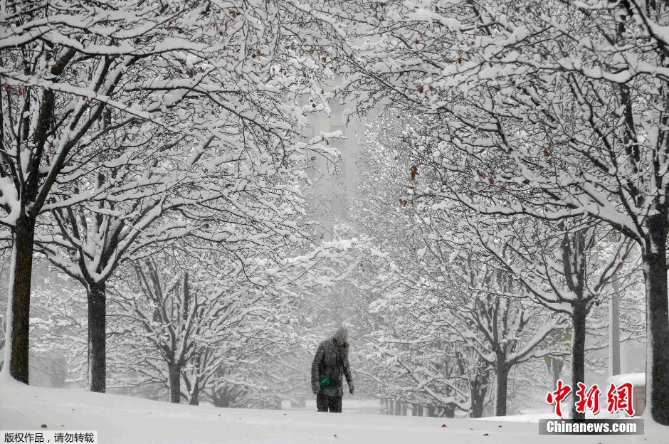 芝加哥天气_暴风雪袭击美国中西部 芝加哥迎入冬以来最大降雪(组图)-搜狐滚动